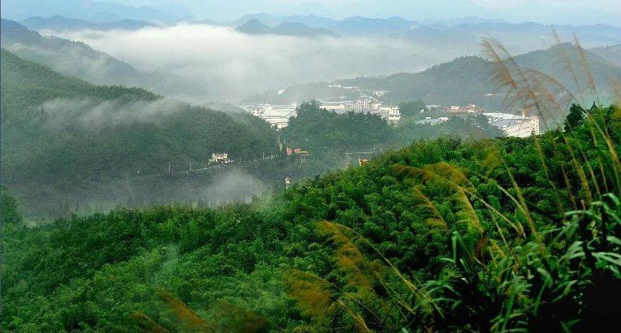 湖南桃江县溯源项目 桃江县因境内桃花江得名,著名景点有浮邱山,凤凰